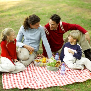 Mother Father Son and Daughter (8-11) Having a Picnic and Chatting