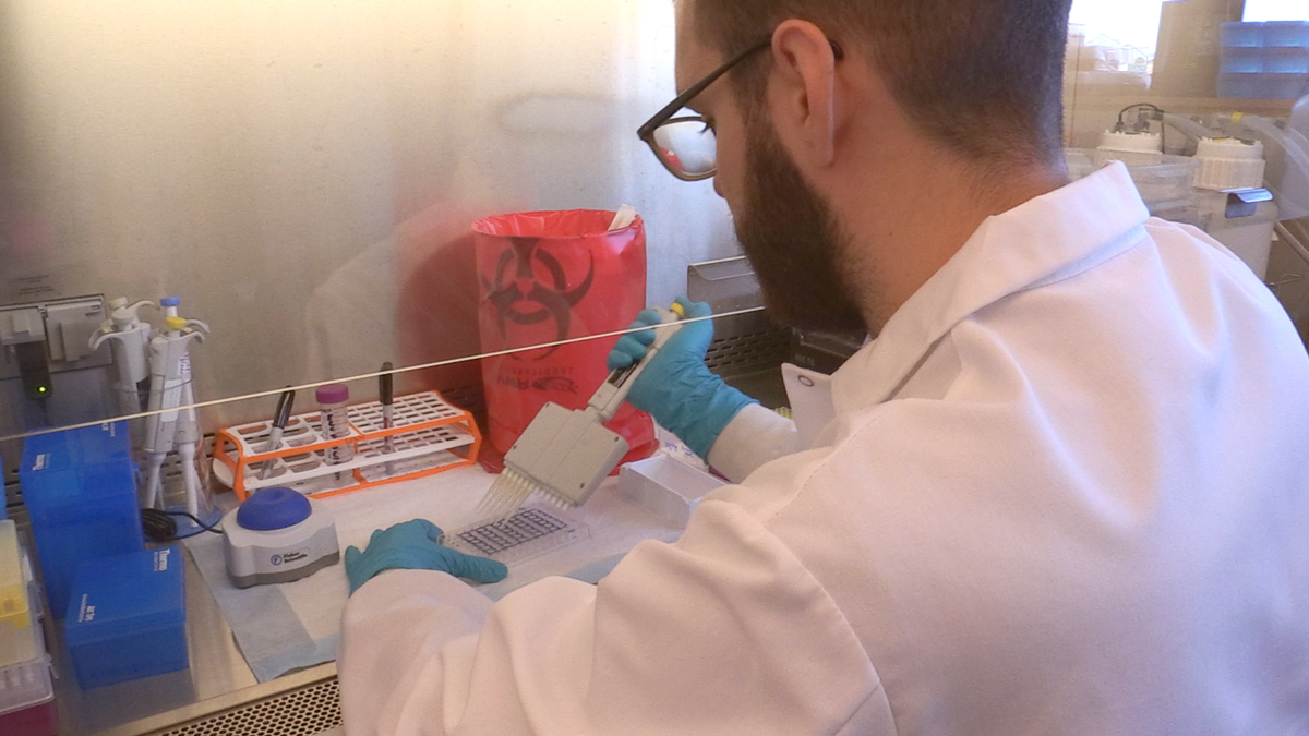 zika-lab-testing